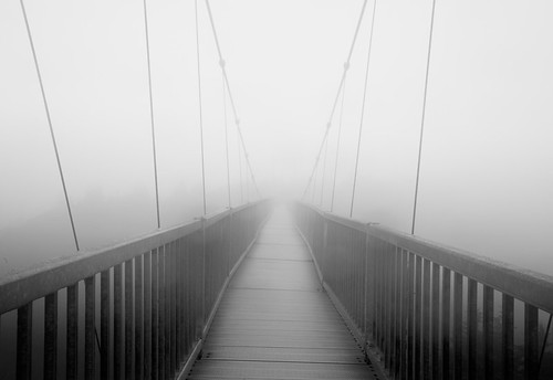 Up on the Grandfather: Mile-High Swinging Bridge | by Rob Travis