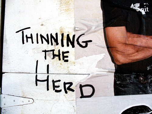 Thinning the herd | by rot ist die farbe der hoffnung