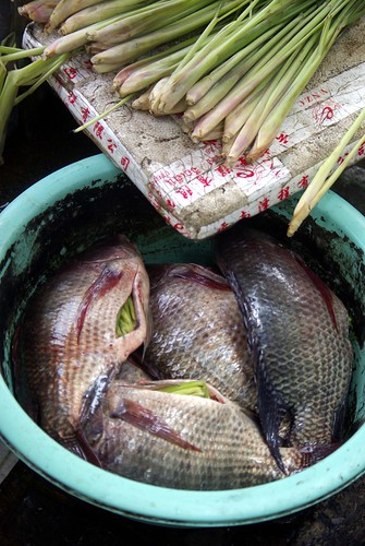 Fish & Lemongrass | by The Hungry Cyclist