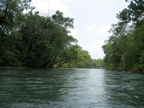 The Eleven Point River, June 2011