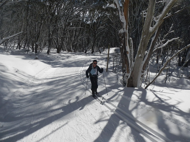 Sublime scenery amongst the snow gums