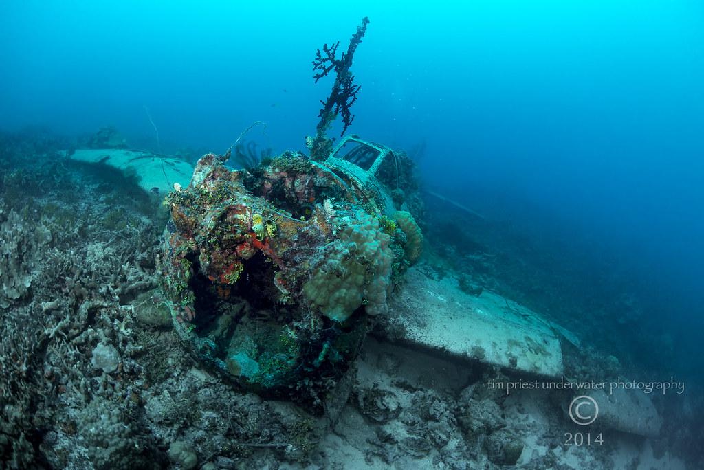 Truk Lagoon 2014 107 1048 _Jill_ torpedo bomber