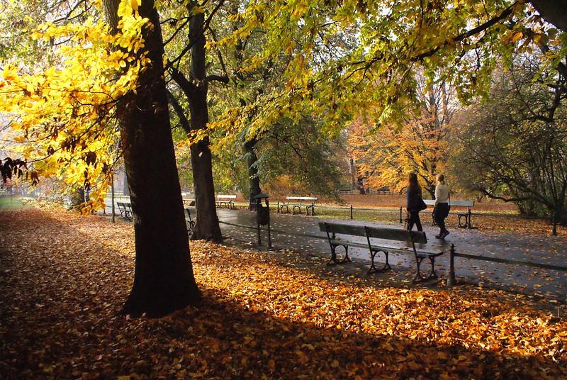 Le jardin des Planty encerclant la Vieille Ville de Cracovie en automne. Idéal pour s'y déplacer en vélo.