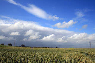 Blue Skies Over Corn Fields | by antaean