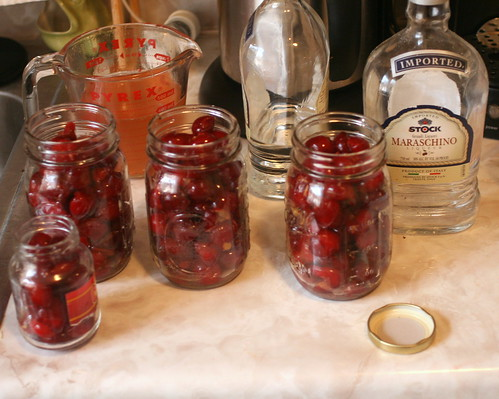 Homemade Maraschino cherries | by Vidiot