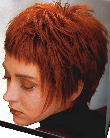 Groovy Crazy Hair Flickr Short Hairstyles Gunalazisus