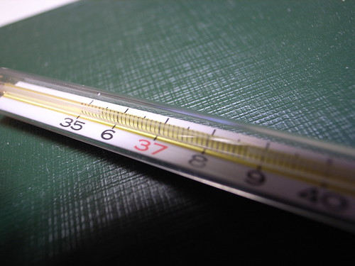 johnson and johnson personally tested rectal thermometer