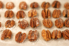 Candied Pecans | by Bakerella