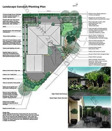 Landscape design concept plans plant designer planting for Landscape design jobs new zealand