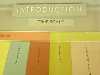 Introduction: Time scale | by I like