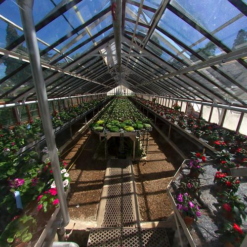 serre du jardin des plantes serre du jardin des plantes de flickr. Black Bedroom Furniture Sets. Home Design Ideas