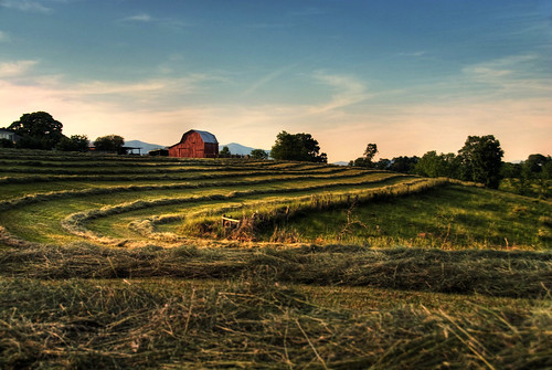 Barn and Hayfields | by Andy Locascio