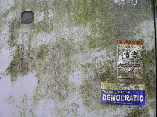 Voting Democratic