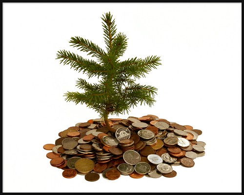 Money doesn't grow on tree ! But investing in them is the best way to capture the Carbon | by pfala