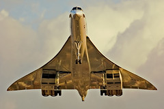 Metallic Concorde | by Spencer Wilmot