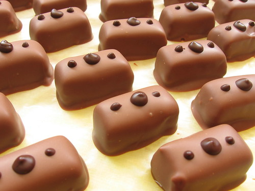 Salted Caramel Ganache Chocolates