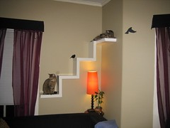 Ikea Lack Shelf made into cat furniture | by Nefarious Cupcake