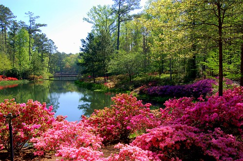 Callaway Gardens - April 2008 | by Tony Crescibene