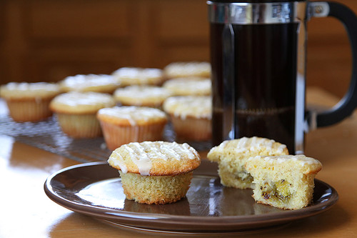 muffins_plated | by HipGayChemistryTeacher
