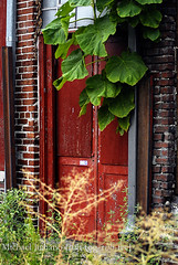 RED DOOR: Memphis TN | by mikejuiliano