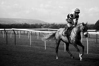 AP McCoy Black & White Horse Racing Photo | by Paolo Camera