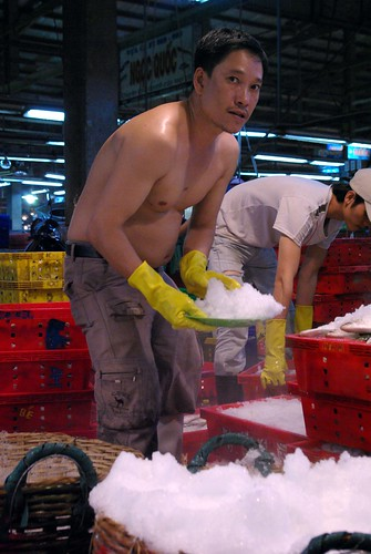 Ice Packing - Chanh Hung Night Fish Market. Ho Chi Min City/Saigon | by The Hungry Cyclist