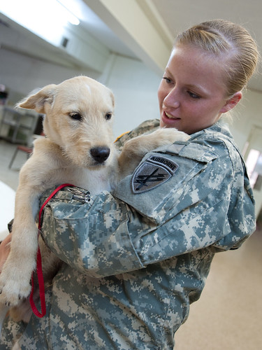 Army Reserve civil affairs soldiers extend helping hands t ...