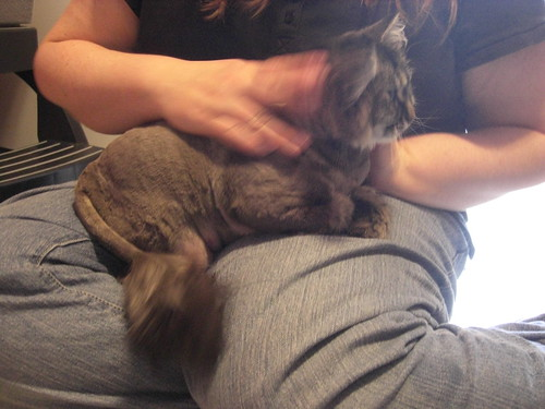 Shaved Danya in Jen's lap