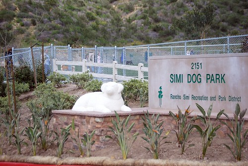 Simi Dog Park Pictures