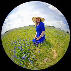Cynthia In The Bluebonnets
