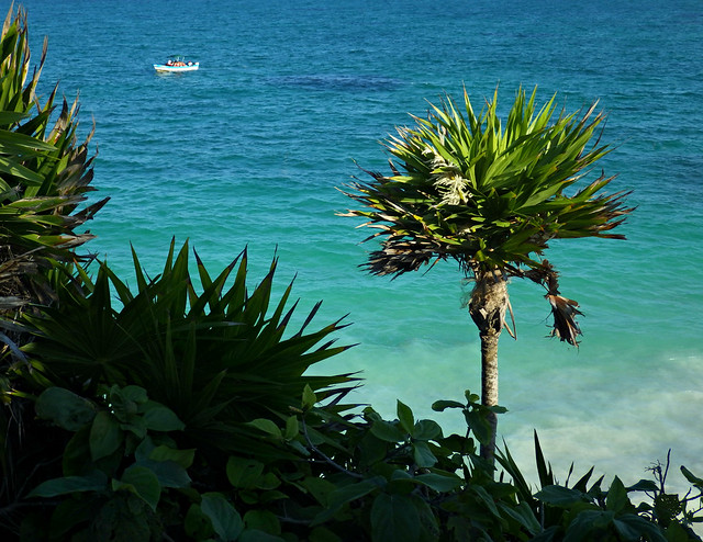 The Coast of the Yucatán Peninsula on the Caribbean Sea