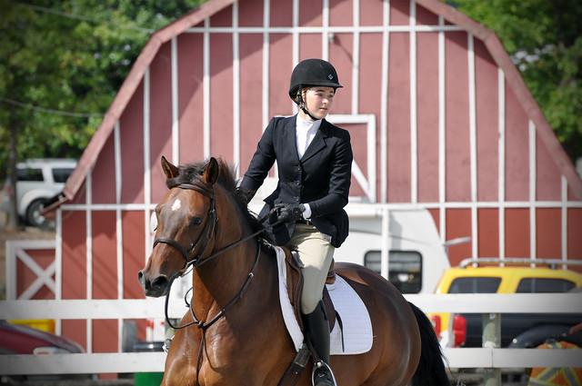 2016 SM Equestrian