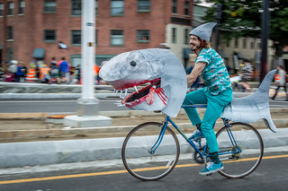 Pronk, Sharkcycle