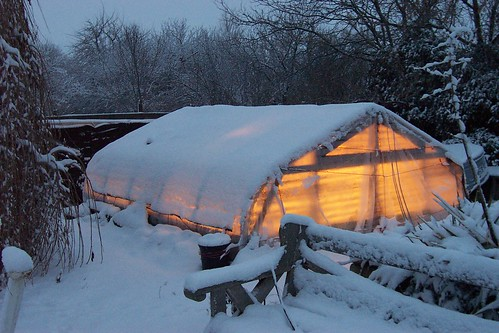 green house under the snow | by honeycincows