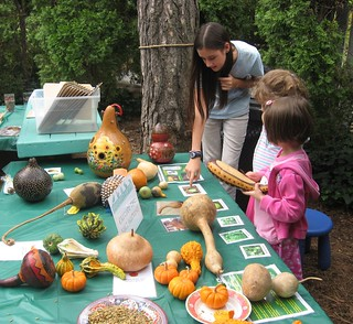 Harvest Workshop | by Brooklyn Botanic Garden