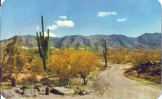 south mountain | by Thee E. Aldriches