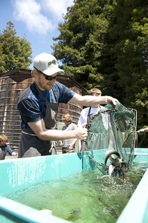 Aquatic Culture | by Humboldt State University
