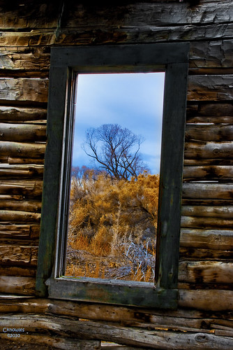 Rustic Window Frame Decor