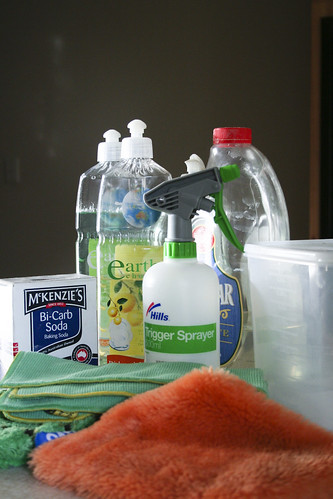 Cleaning | by go_greener_oz