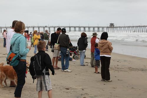 Dog Beach San Diego Address