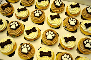 *Puppy Dog Cupcakes | by CupcakesCatering.com