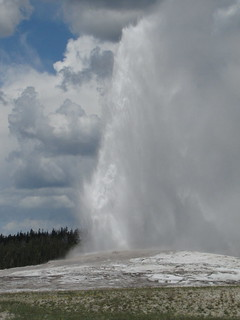 Old Faithful | by PipingHotPapers