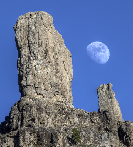 Moonrise over Roque Nublo | by daniele paccaloni