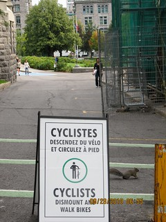 Message to McGill University cyclists | by PJ Peterson