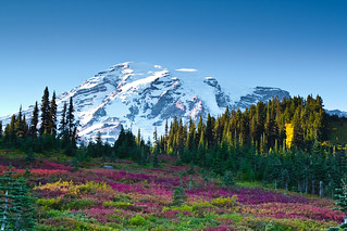 Mount Rainier in Fall color | by abhinaba