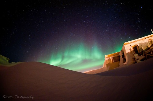 Arctic Night | by savillent