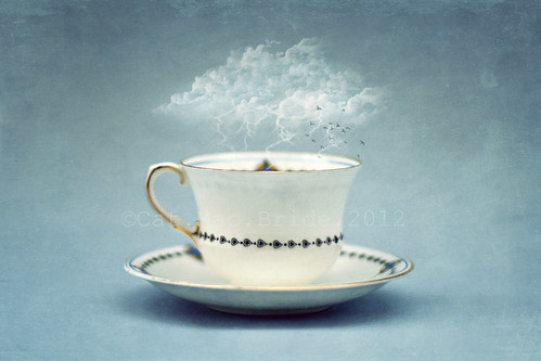 it's all just a storm in a teacup... | by CatMacBride