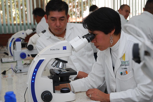 Using a microscope to examine fungus during a workshop in CIMMYT's Seed Health Laboratory