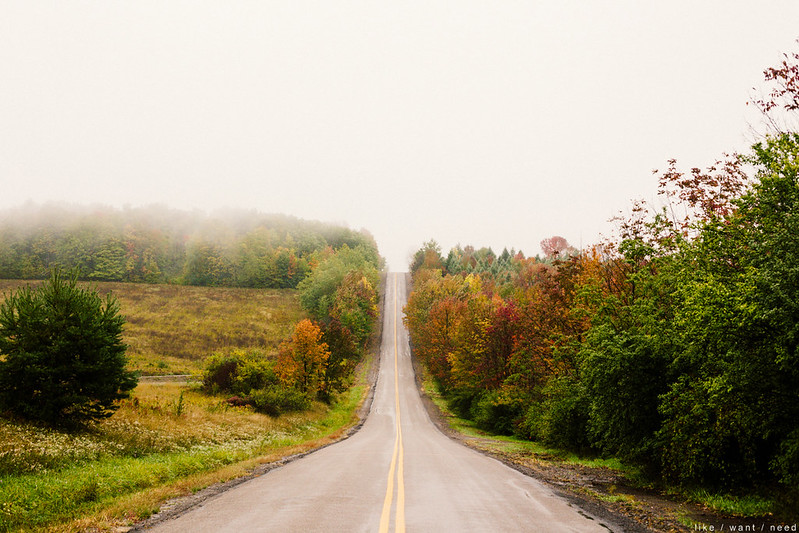 Fog, Country Road