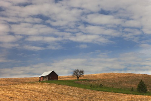 Palouse barn | by Steve_B's